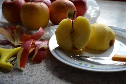 Das Ausgangprodukt: Äpfel