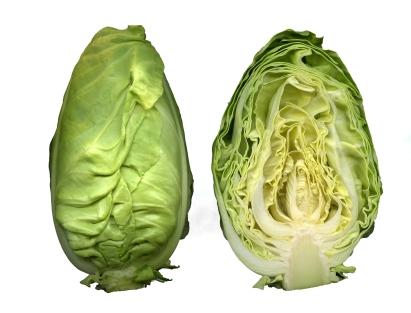 Sicher der Kopfkohl mit den zartesten Blättern und dem besten Geschmack. Eigentlich kein echter Winterkohl, aber zwecks Vollständigkeit und gutem Geschmack hier aufgeführt. Lässt sich sehr gut roh verwenden als z.B. Kohlsalat (Krautsalat). Auch mariniert und gegrillt ein Highlight. Das Filderkraut (Fildern bei Stuttgart) ist in die Arche des Geschmacks der Slow Food Bewegung aufgenommen. Leidet unter rückläufigen Anbau, da runder Weißkohl leichter industriell zu verarbeiten ist.